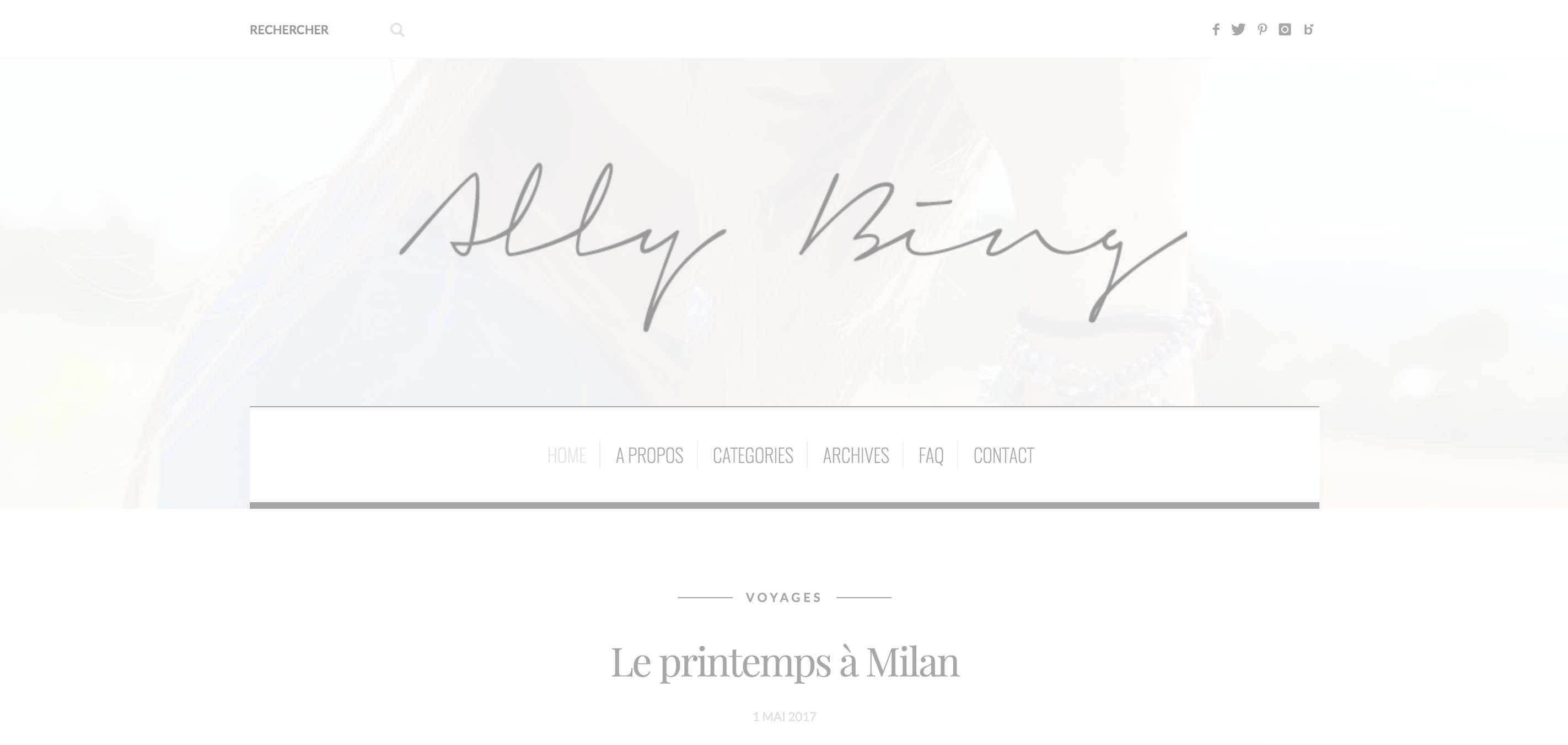 Blog Ally Bing